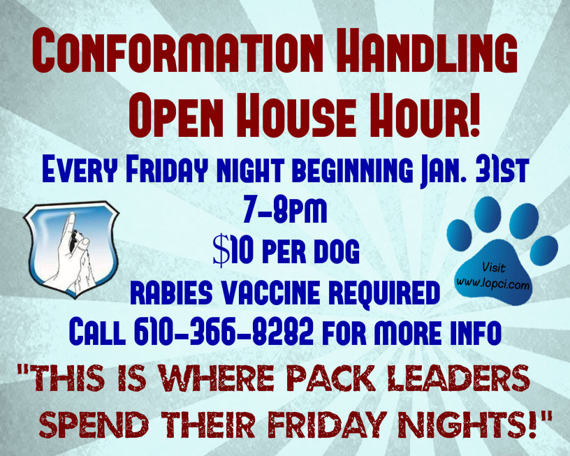 conformation handling conformation hour blue and red flyer for fb