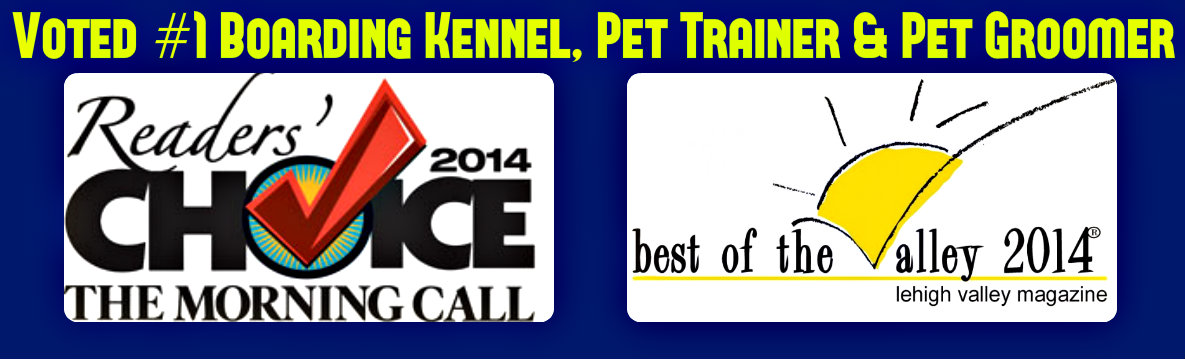 Best Boarding Kennel, Pet Trainer,Pet Groomer 2014