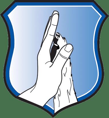 shield-2018