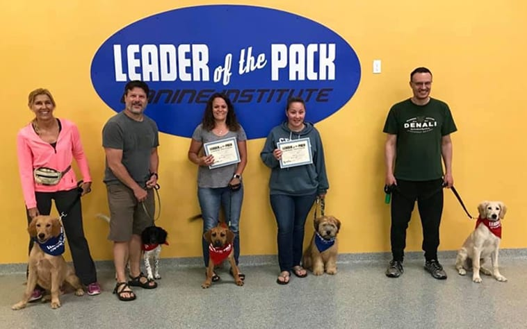 Leader of the Pack Canine Institute -Allentown, PA- Home